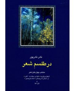 کتاب-در-طلسم-شعر-نادر-نادرپور-نشر-سخن