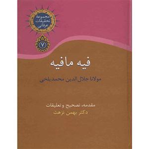 کتاب فیه ما فیه دکتر بهمن نزهت نشر سخن